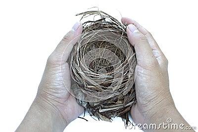 Hold nest