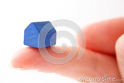 Holding blue house