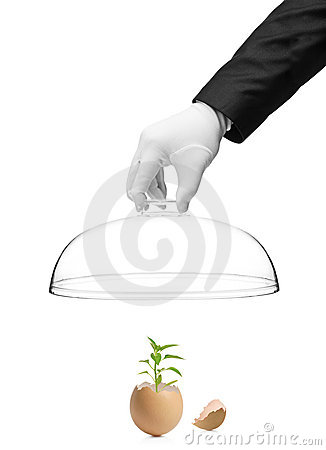 Holding a cover over a plant in eggshell