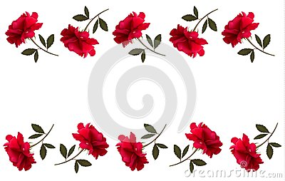 Holiday background with red beautiful roses.