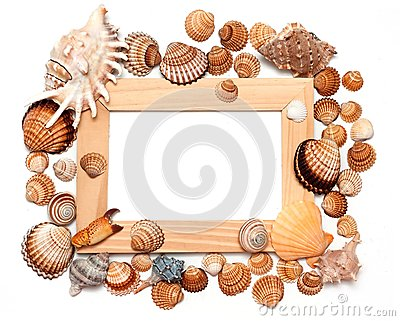 Holiday beach concept with shells