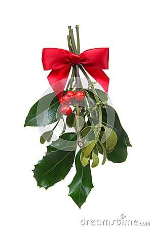 Free Holiday Christmas Mistletoe Royalty Free Stock Image - 12216736