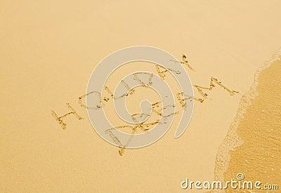 Holiday dream written in the sandy beach