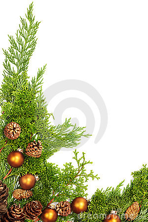 Holiday foliage border
