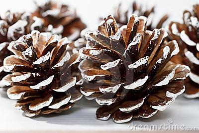 Holiday Pine Cones