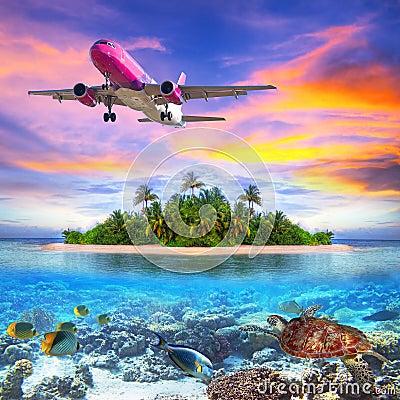 Holidays on the tropical island