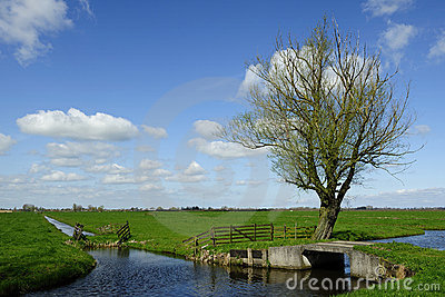 Holland landscape