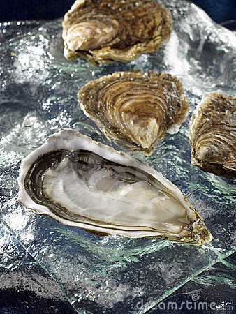 Hollow oysters from Brittany