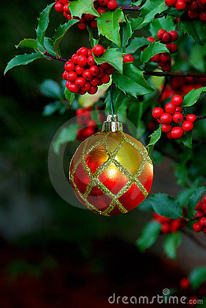 Free Holly Berries Christmas Ornament Royalty Free Stock Image - 1306276