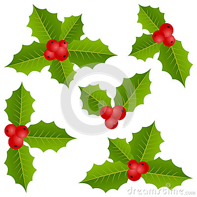 Holly Berry Christmas Collection