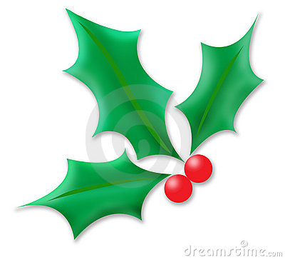 Free Holly Sprig Stock Photography - 326462