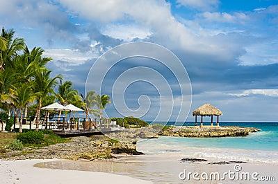 Ладонь и тропический пляж в тропическом рае. Летнее время holyday в Доминиканской Республике, Сейшельских островах, Вест-Инди, Фил
