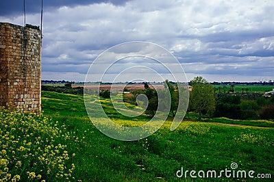 Holyland Series -Afek National Park#7