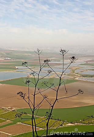 Holyland series-Izrael Valley