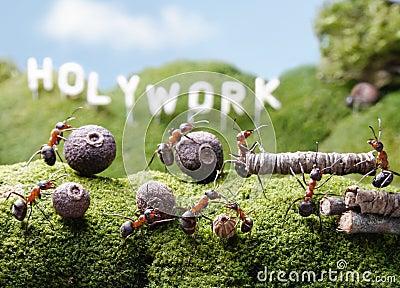 Holywork wzgórza, praca zespołowa, mrówek bajki