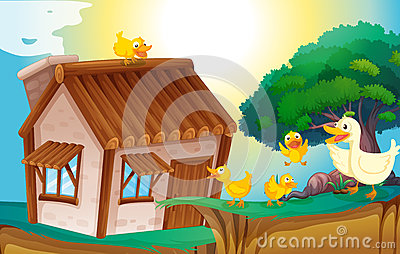 Holzhaus und Enten