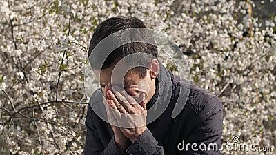 Hombre estornudando cerca de un árbol floreciente almacen de video
