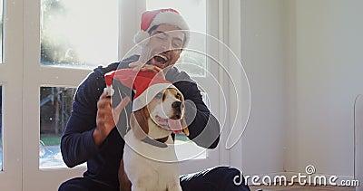 Hombre joven sonriente que pone el casquillo de santa en su perro casero 4K 4k metrajes