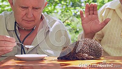 Hombre mayor alimenta a un niño travieso con cuchara almacen de video