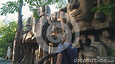 Hombre turístico de la vista posterior que camina en el parque, disfrutando de la hermosa vista, ocio, viaje, aventura almacen de metraje de vídeo