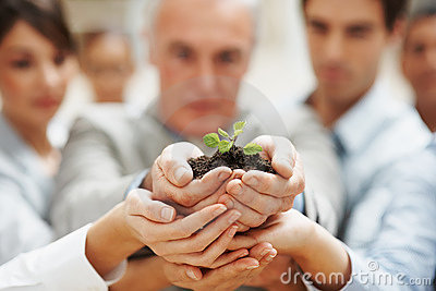Hombres de negocios que mantienen una planta unida