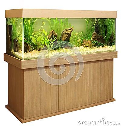 Free Home Aquarium Stock Photography - 16301172