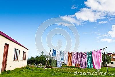 home backyard in summer
