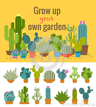 Free Home Cactus Garden Poster Stock Photography - 56098922