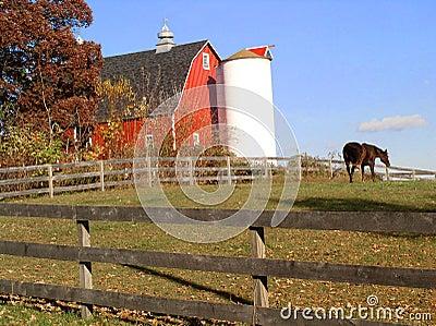Home on the farm