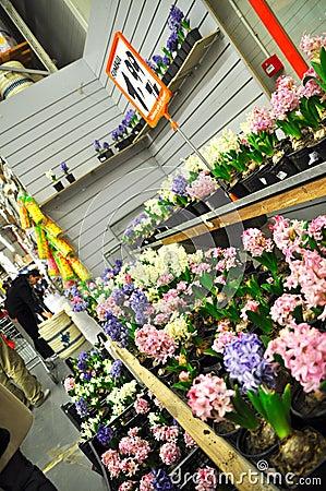 Home improvement store Editorial Stock Photo