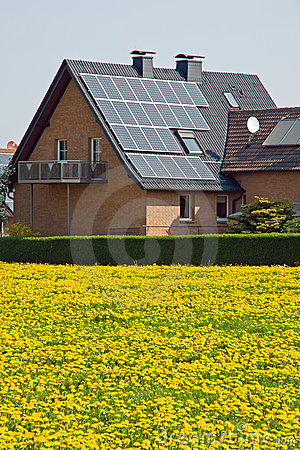 Home With Solar Panels And Yellow Dandelion