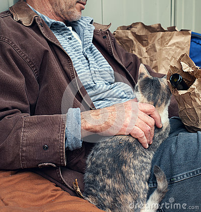 Homeless Man with Wine Bottle and Stray Cat