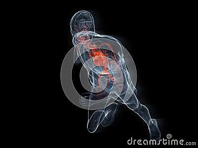 Homem running transparente