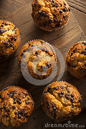 Free Homemade Chocolate Chip Muffins Royalty Free Stock Photo - 48957525