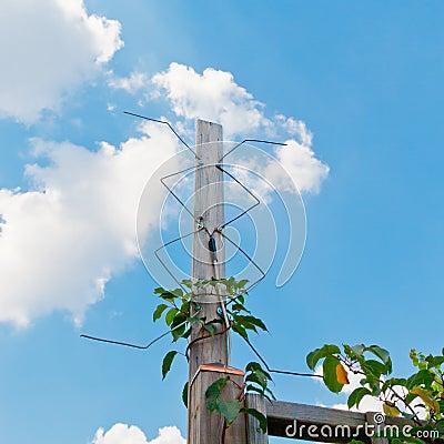 Homemade Digital Tv Antenna Outdoor | Car Interior Design