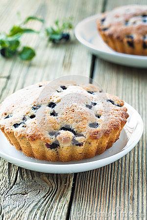 Free Homemade Mini Fresh Blueberry Pies On White Plate Royalty Free Stock Photography - 32490937