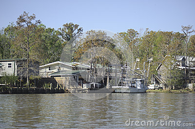 Homes in the swamp