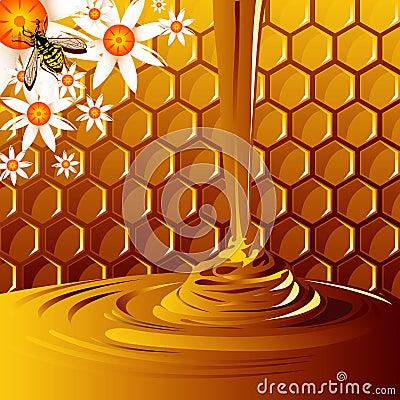 Free Honey Royalty Free Stock Photos - 3211108