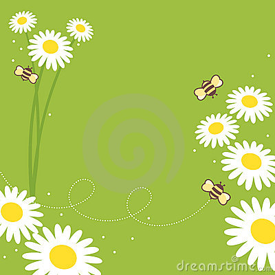 Free Honey Bees Royalty Free Stock Photo - 10284955
