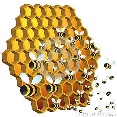Free Honey Bees Royalty Free Stock Image - 15211656