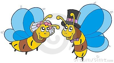 Honey bees wedding couple