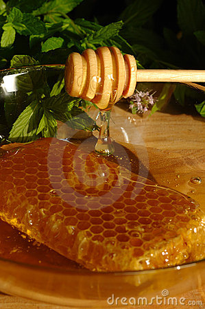 Free Honey Comb And Drizzler Stock Photography - 11289882