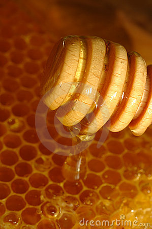 Free Honey Comb And Drizzler Royalty Free Stock Image - 11289906