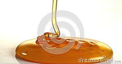 Honey Flowing tegen Witte Achtergrond, stock footage