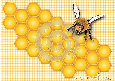 Honey, honeycomb,honey label,honey jar label,summer, insect,yellow bee, sweet, honey background, Stock Photo