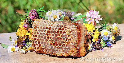Honey honeycombs and wild flowers