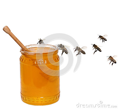 Honey jar and bees