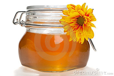 Honey jar, isolated