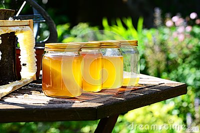 Honey Jars in the sun