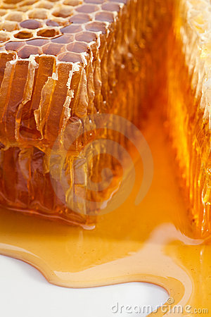 Free Honeycomb Stock Images - 16665834